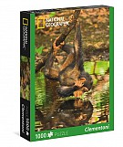 Puzzle National Geographic Chimpanzee 1000